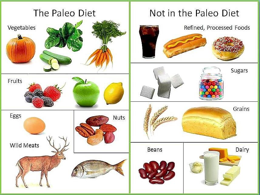 dieta low carb pode comer gelatina