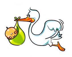 Bebe e cegonha